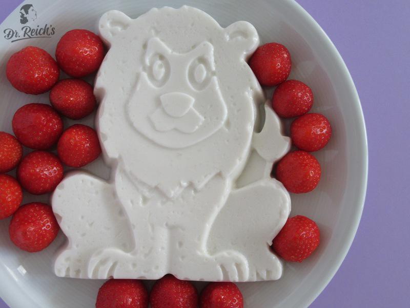 FODMAP Reizdarm bewusst vegan glutenfrei laktosefrei Dr Reichs Kokos Panna Cotta ohne Haushaltszucker