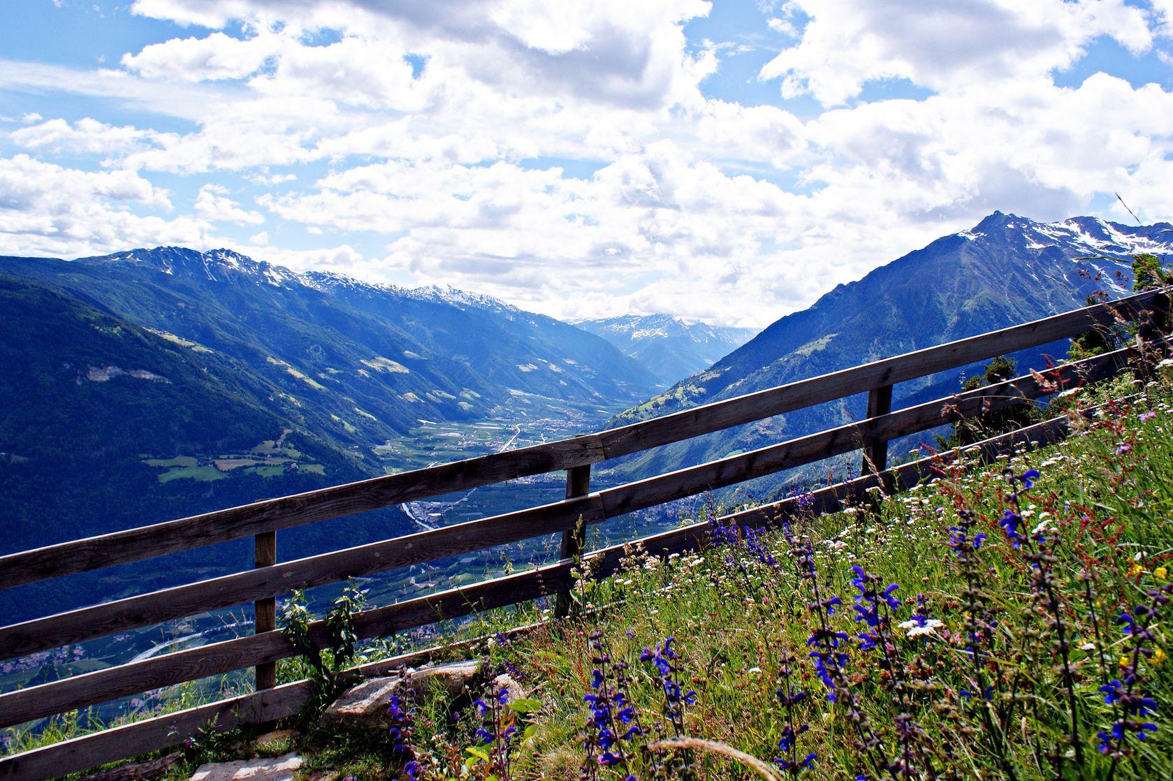 Die Inspiration für Dr. Reich´s FODMAP Brühe No.1: Heublumenwiese im Vinschgau, Südtirol.