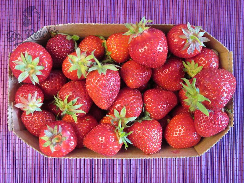 DrReichs Fodmap Eis vegan Erdbeeren