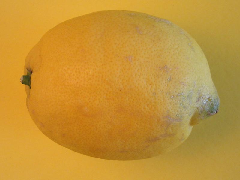 DrReichs Meal Prep Fodmap Zitrone