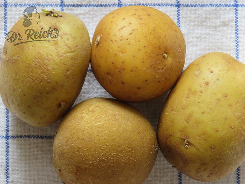 Low FODMAP Liste Dr Reichs Kartoffeln