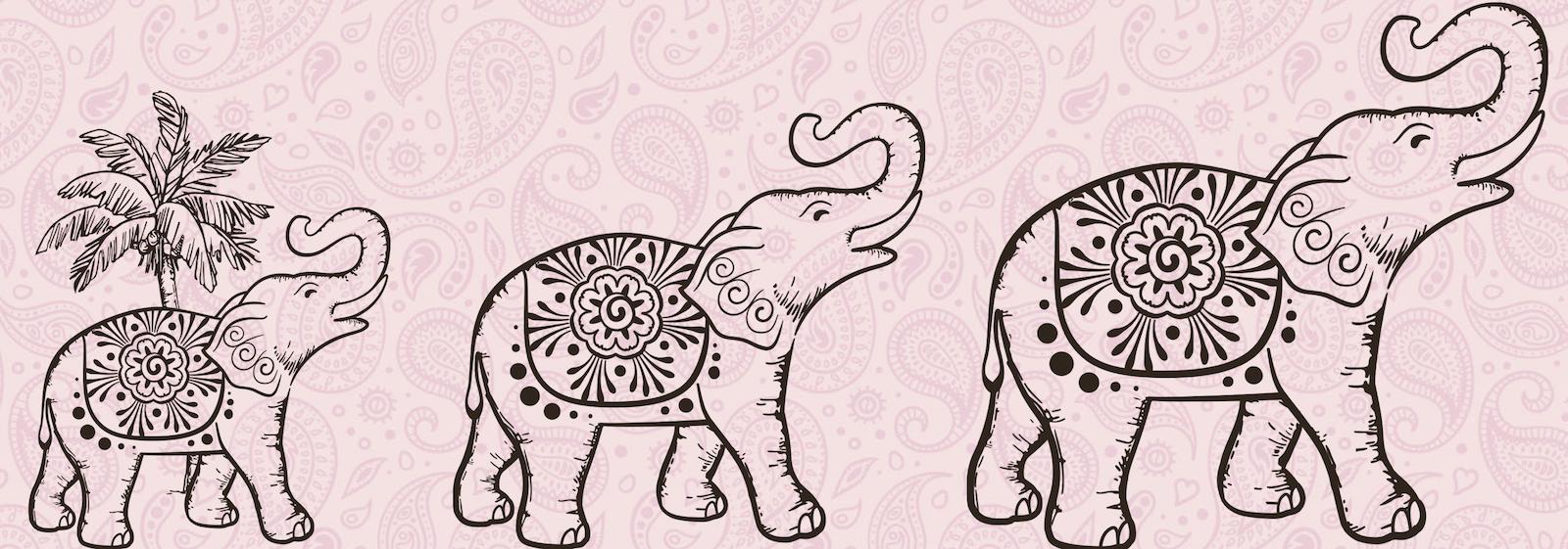 FODMAP vegane Thai Style Brühe Dr. Reich´s Elefanten