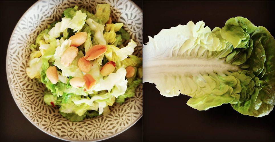 FODMAP Diät Salat mit Erdnüssen