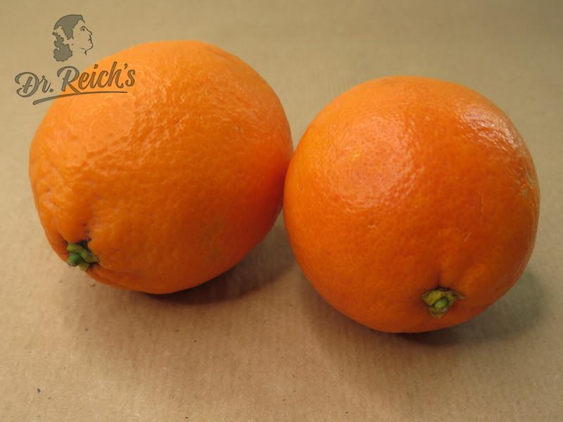 Bio Blut Orangen